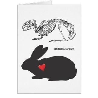 Bunny Anatomy Card