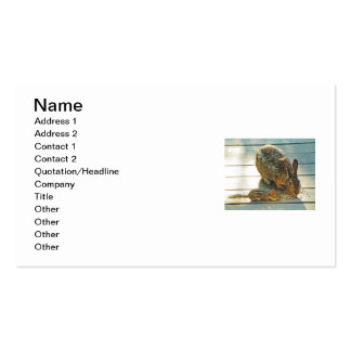 Bunny and Chipmunk Sharing Business Card