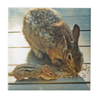 Bunny and Chipmunk Sharing Tile