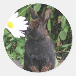 Bunny and Daisy Classic Round Sticker