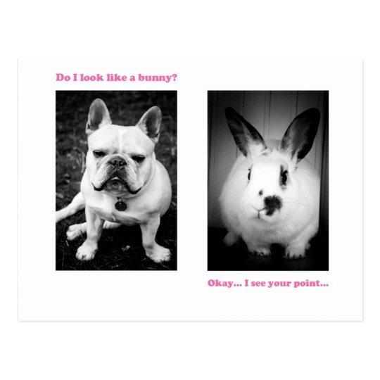 Bunny and French bulldog Postcard
