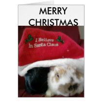 Bunny and guinea pig christmas card