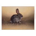 Bunny Blank Card by Andrew Denman