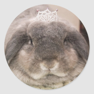 Bunny bling (sticker) classic round sticker