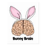 Bunny Brains Postcard