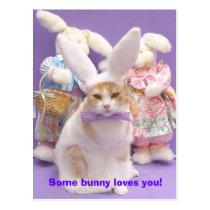 Bunny Bubba 3 Postcard
