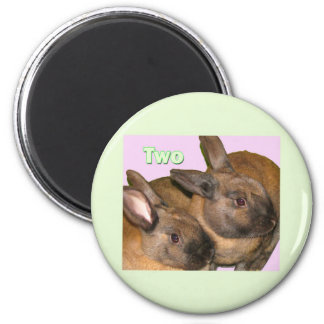 Bunny Bunnies Two Bunnies 2 Inch Round Magnet