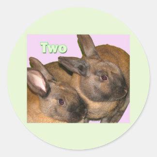 Bunny Bunnies Two Bunnies Classic Round Sticker