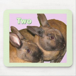 Bunny Bunnies Two Bunnies Mouse Pad