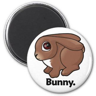 Bunny Bunny. Refrigerator Magnets