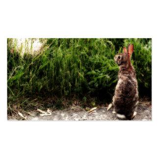Bunny Business Card Templates