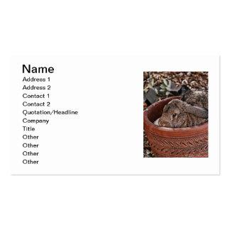 bunny business card