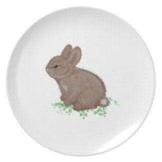 Bunny Caricature Party Plates