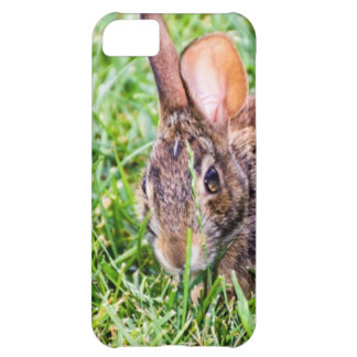 Bunny iPhone 5C Covers