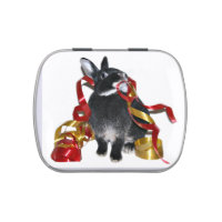 Bunny Christmas Jelly Belly Candy Tin