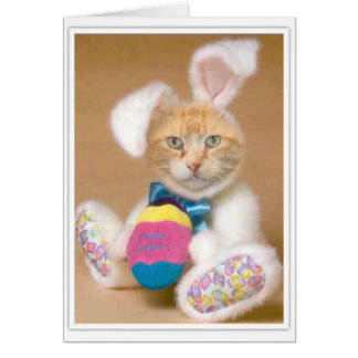 Bunny Claude Card