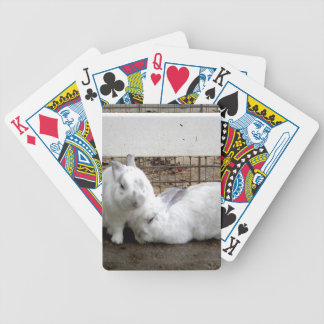 Bunny Couple Bicycle Playing Cards