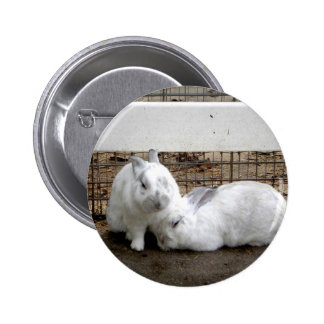 Bunny Couple Button