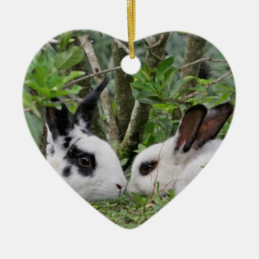 Bunny Couple Double-Sided Heart Ceramic Christmas Ornament