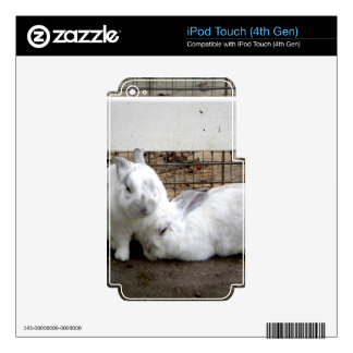 Bunny Couple iPod Touch 4G Skin