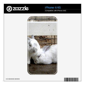 Bunny Couple Skin For The iPhone 4