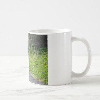 Bunny Croses Street Coffee Mug