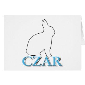 Bunny Czar Cards