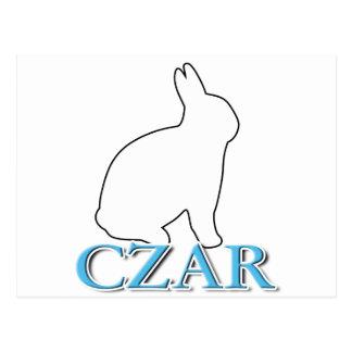 Bunny Czar Postcard