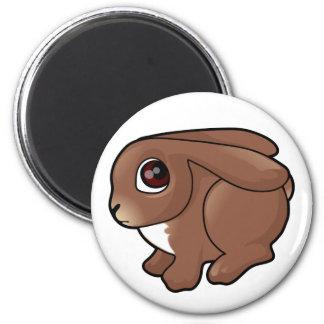 Bunny Design Magnets