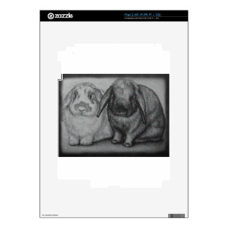 Bunny Drawing Rabbit Animal Chalk Art Skins For iPad 2