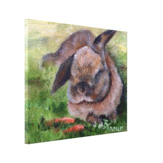 Bunny Dreams Canvas Prints