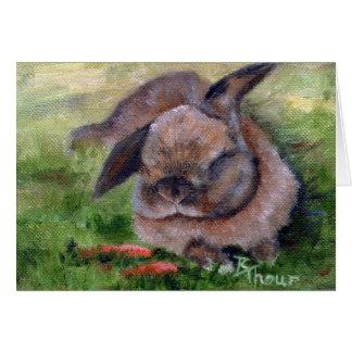 Bunny Dreams Greeting Cards