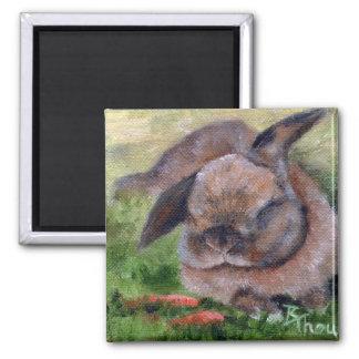Bunny Dreams Magnet