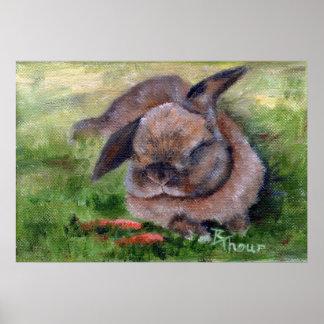 Bunny Dreams Posters