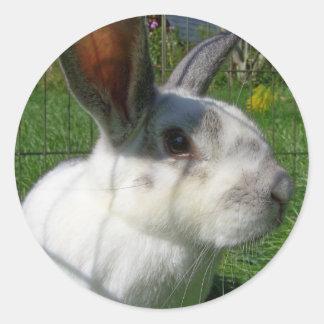 Bunny Face Sticker