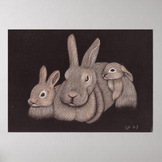 Bunny Family Poster