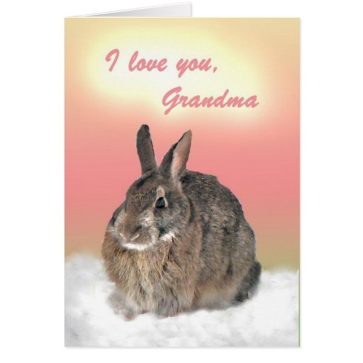Bunny for Grandma Mother's Day Card