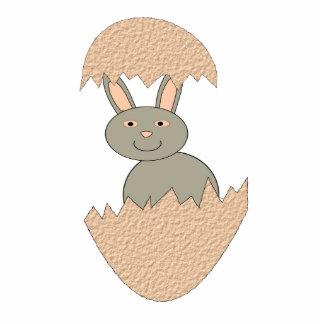 Bunny Hatching from Egg Weird Photo Sculpture