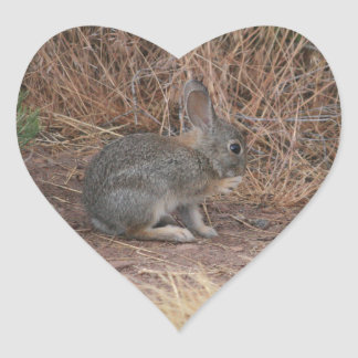 Bunny Heart Sticker