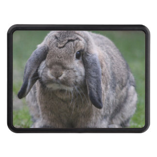 bunny hitch cover