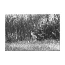 Bunny in the Back Canvas Print