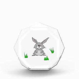 Bunny in the Grass Award