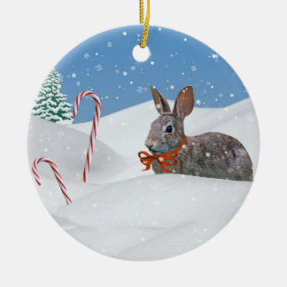 Bunny in the Snow Christmas Ornament