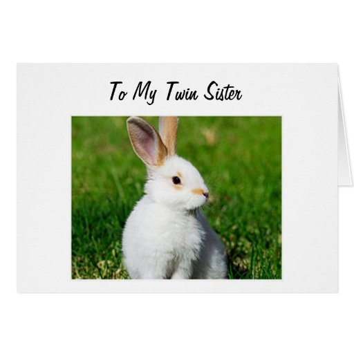 BUNNY IS HOPPING BY TO YOUR TWIN SISTER BIRTHDAY CARDS