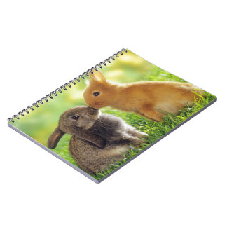 Bunny Kiss Notebook