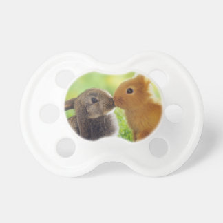 Bunny Kiss Pacifier