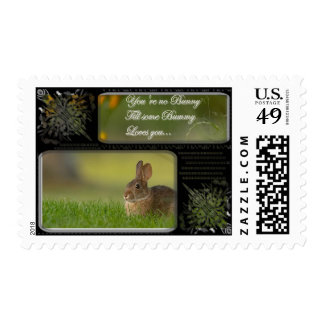 bunny love postage stamps