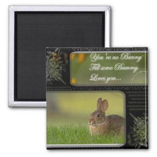 bunny love square magnet