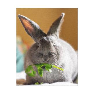 Bunny Loves Veggies Canvas Print