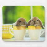bunny mouse pad 5